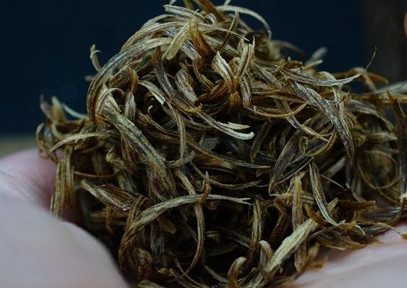 如何种植沉香树_奇楠沉香有什么特点?_中国永发沉香树种植基地